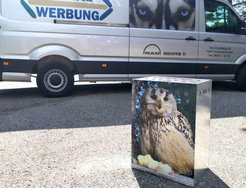 Greifvogel Transportbox